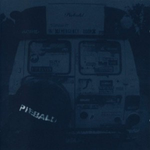 piebald-300x300
